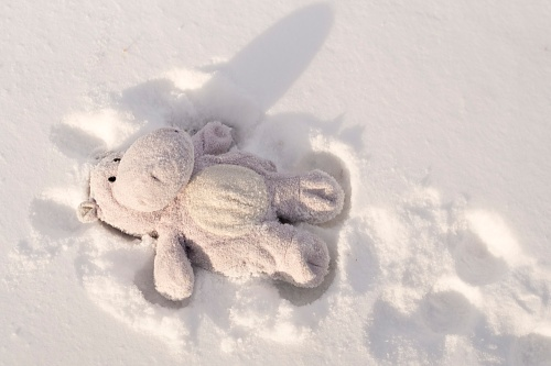Hippo Making Snow Angel