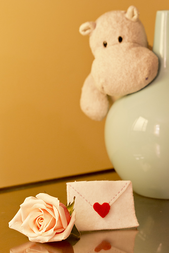Tiny Hippo Finds his Valentine's Day Gift