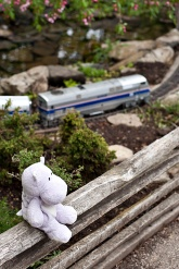 Model Railroad Garden and Tiny Hippo