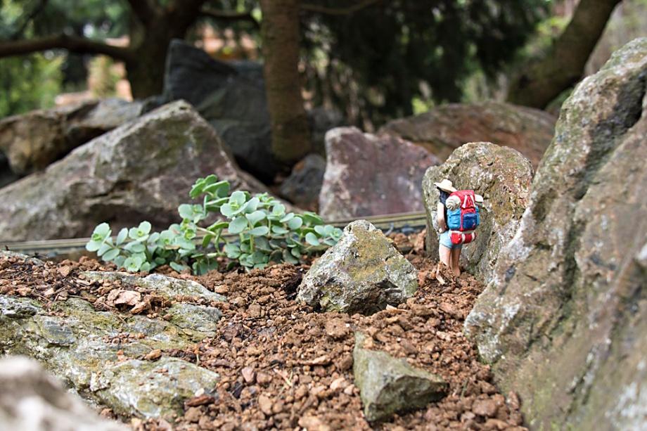 This wee hiker was traversing the wildernes