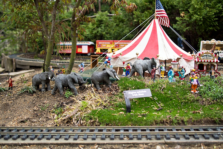 It was none other than the Ringling Brothers Circus. Their famous train can be seen in the background