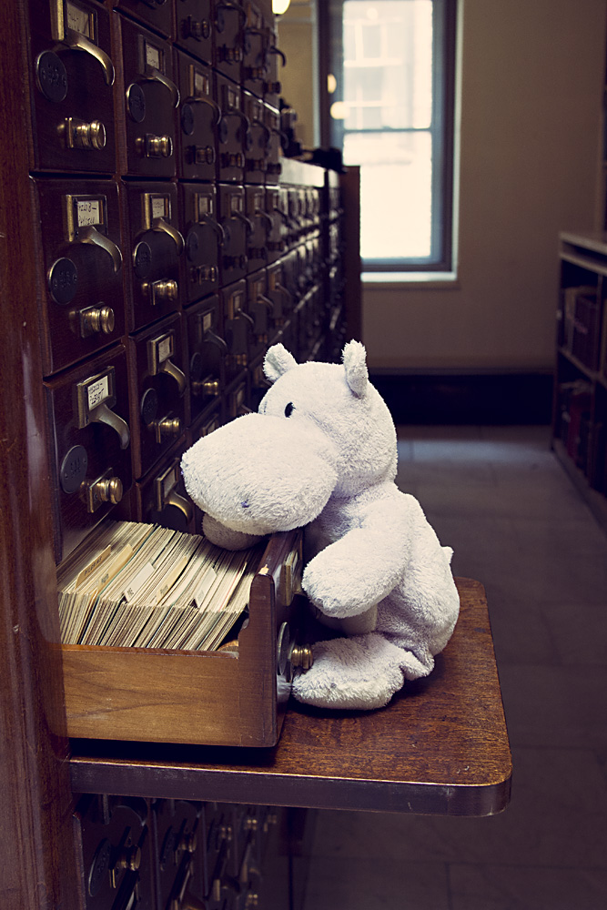 George Peabody Library Card Catalog and a Tiny Hippo