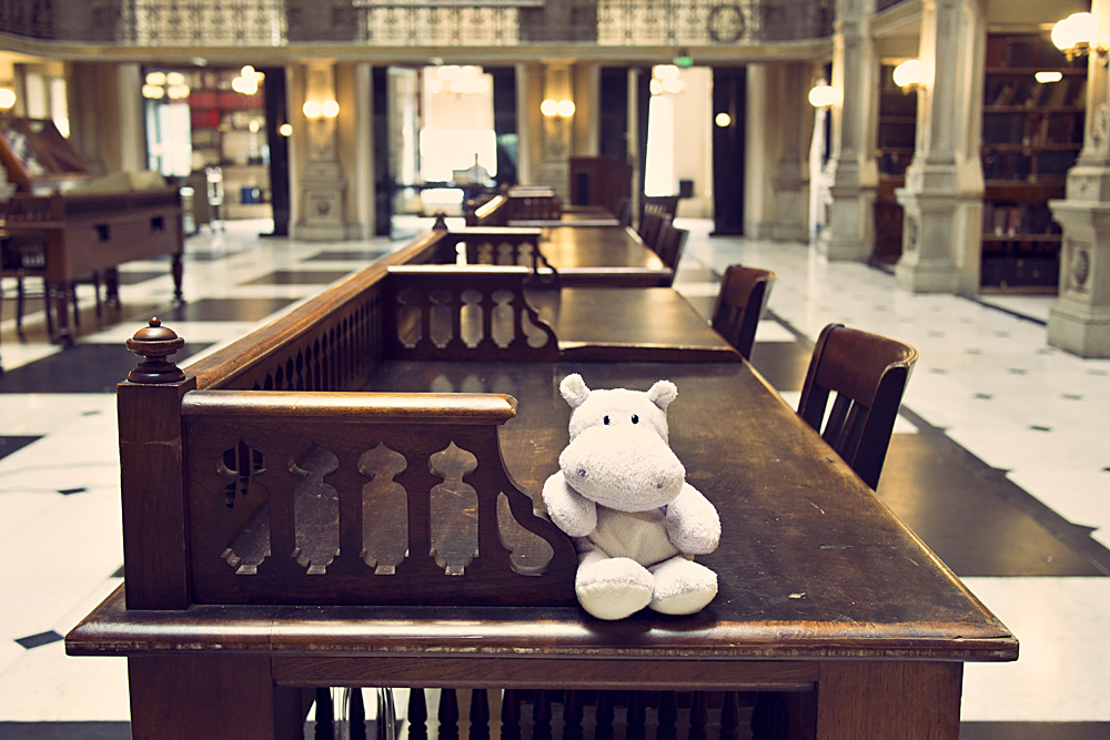 George Peabody Library Tables with Tiny Hippo