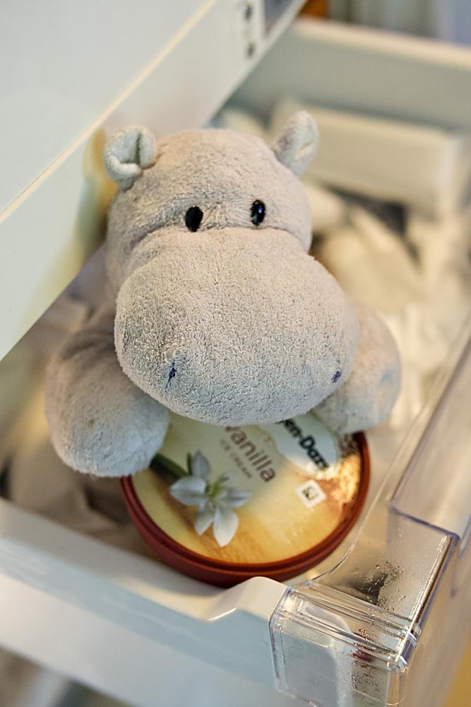 Tiny Hippo has Ice Cream