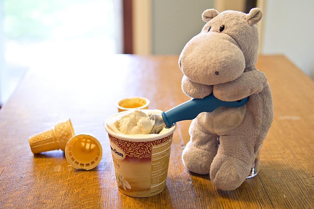 Tiny Hippo Scoops Ice Ceam