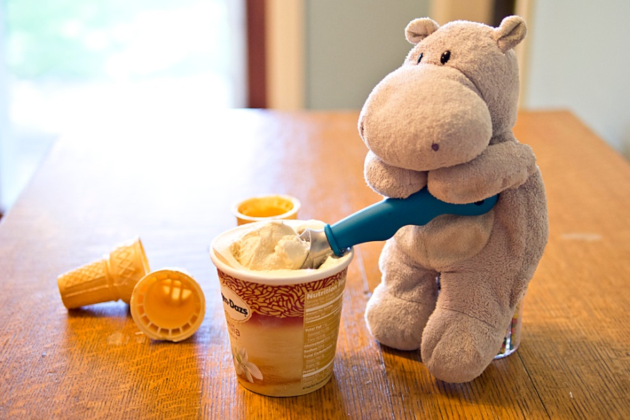 Tiny Hippo Scoops Ice Ceam