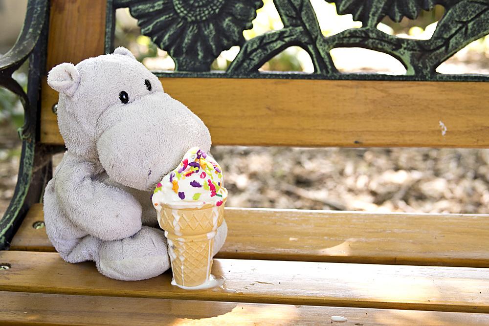 Tiny Hippo Eats Ice Cream Cone
