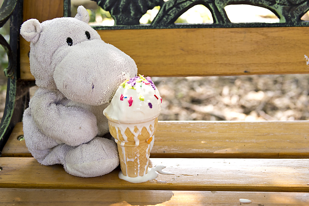Tiny Hippo with Ice Cream