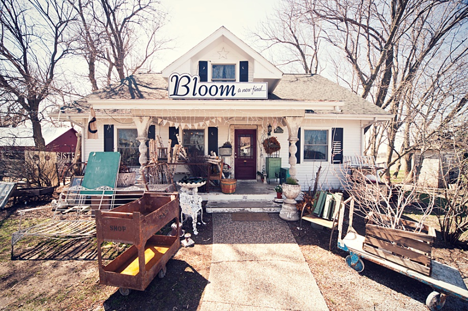 Bloom in Kalona, Iowa