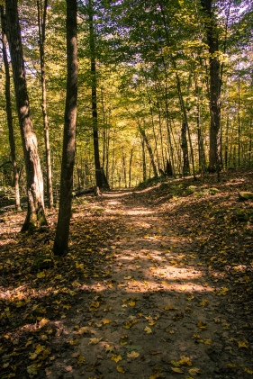 Governor Dodge State Park, Fall Colors