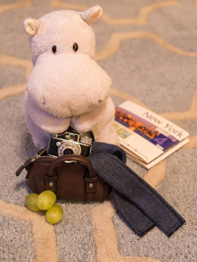 Tiny Hippo Packs his Bags
