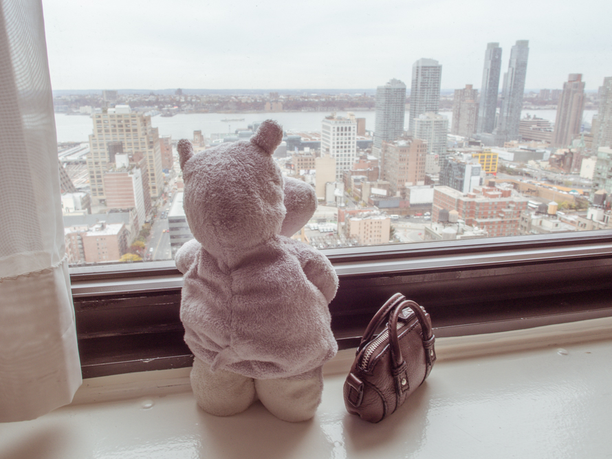 View from New York Hotel and Tiny Hippo
