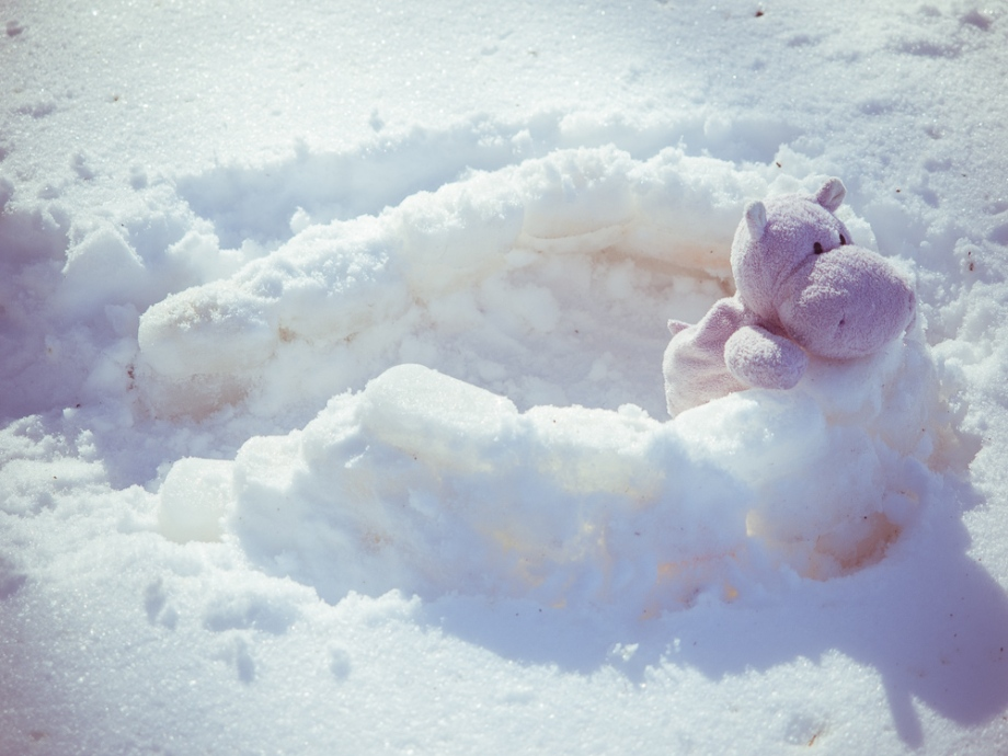 Snow Hippo Constructs Igloo