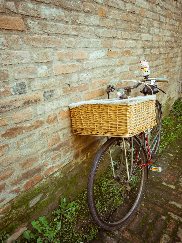 Bike with Lucky Cat Horn