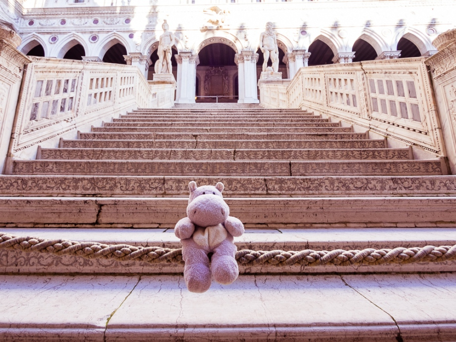The Giants' Staircase with a Tiny Hippo