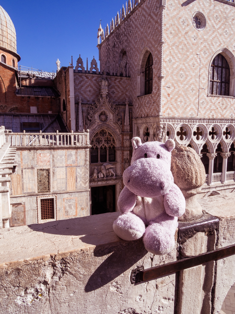 Tiny Hippo in Fornt of the Porta della Carta