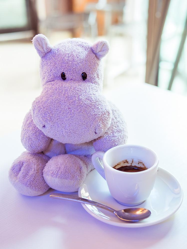 Tiny Hippo with Espresso