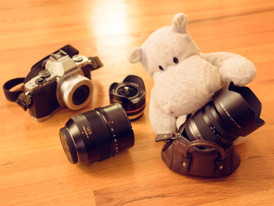 Tiny Hippo with Huge Lens