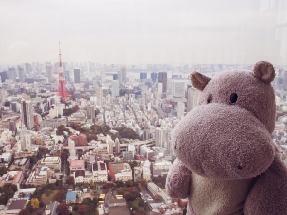 Tiny Hippo at Mori Art Museum Tokyo City View