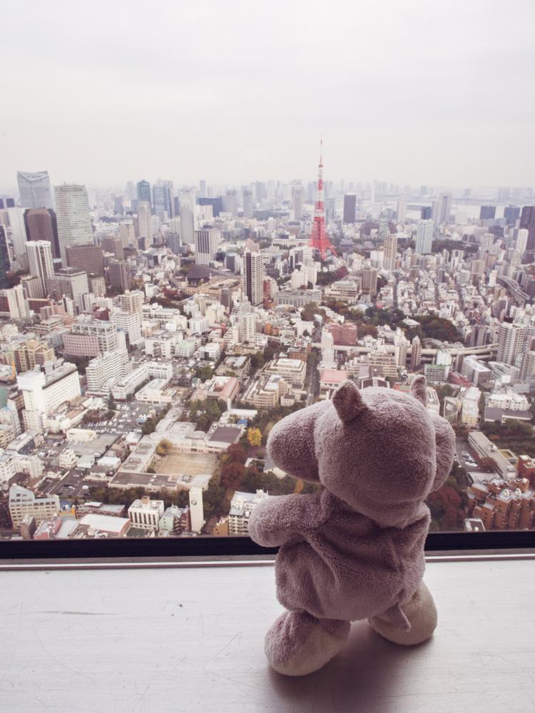Tiny Hippo Tokyo City View
