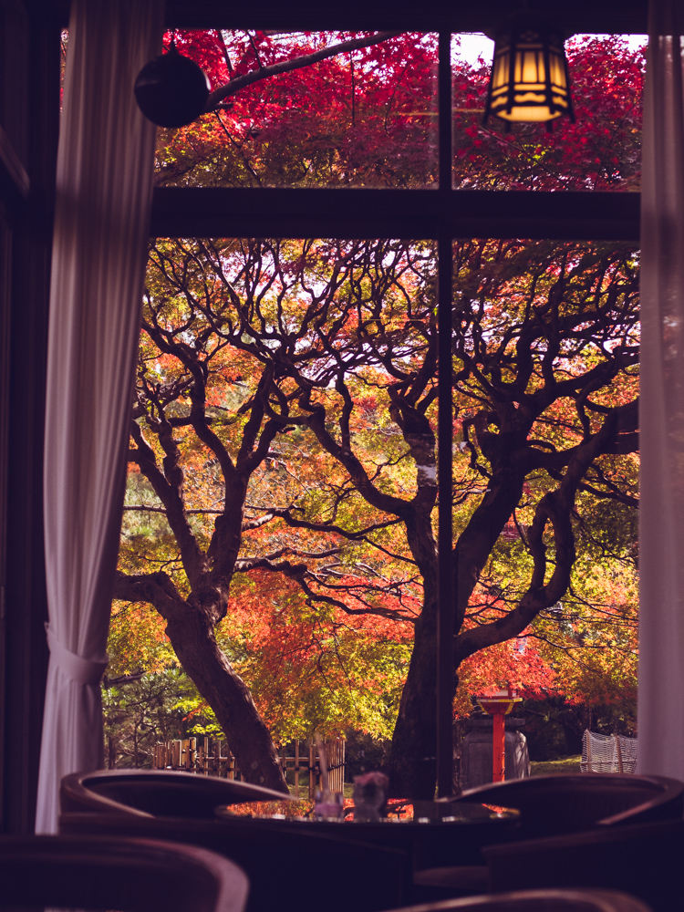 Nara Hotel Tea Room Fall