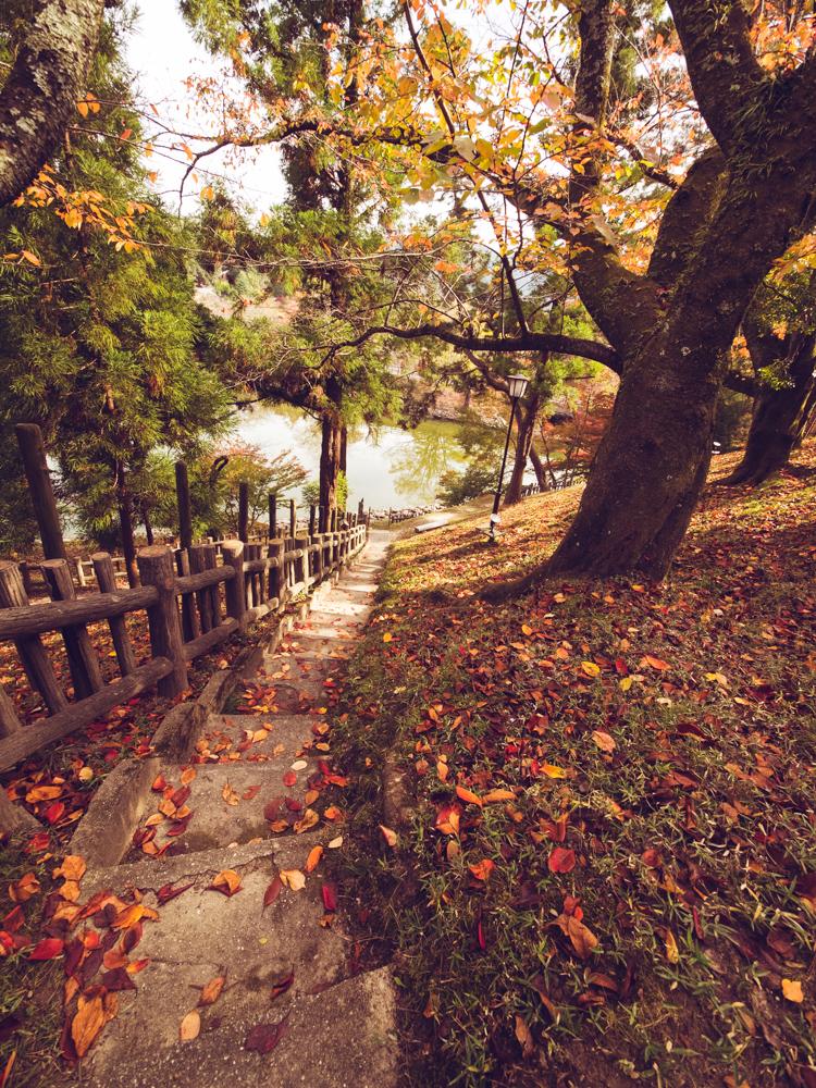 Path at Nara Hotel