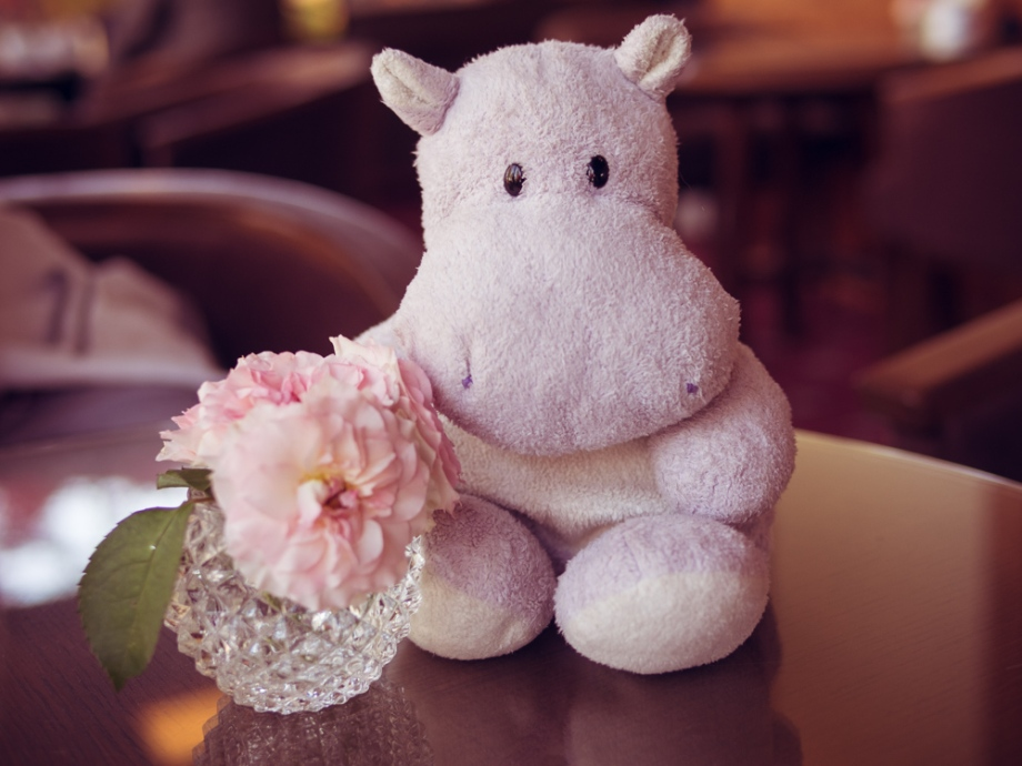 Tiny Hippo with Flowers