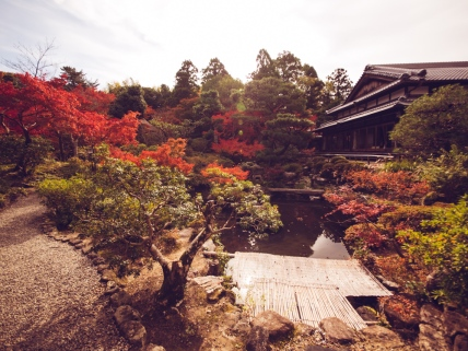 Yoshikien Garden in the Fall