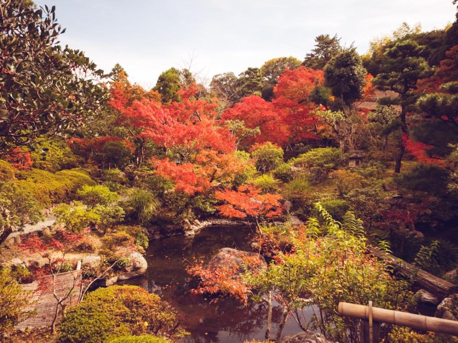Yoshikien Garden, Nara