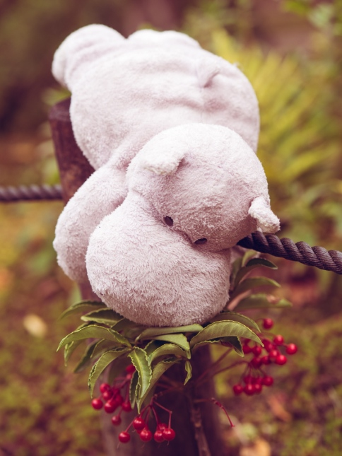 Tiny Hippo with Red Berries