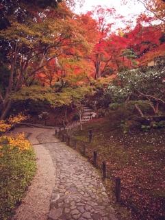 Yoshikien Garden Path