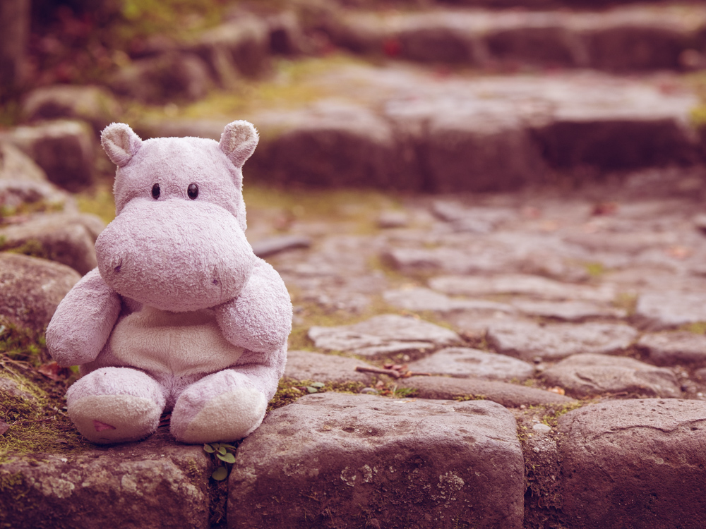 Tiny Hippo Gets Lonely