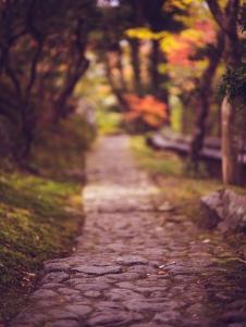 Path in Nara Garden