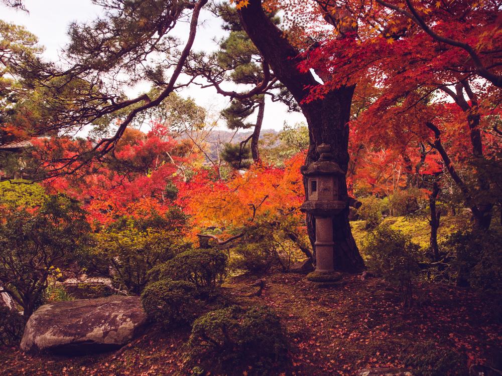 Yoshikien Garden in the Fall