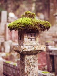 Moss Covered Lantern