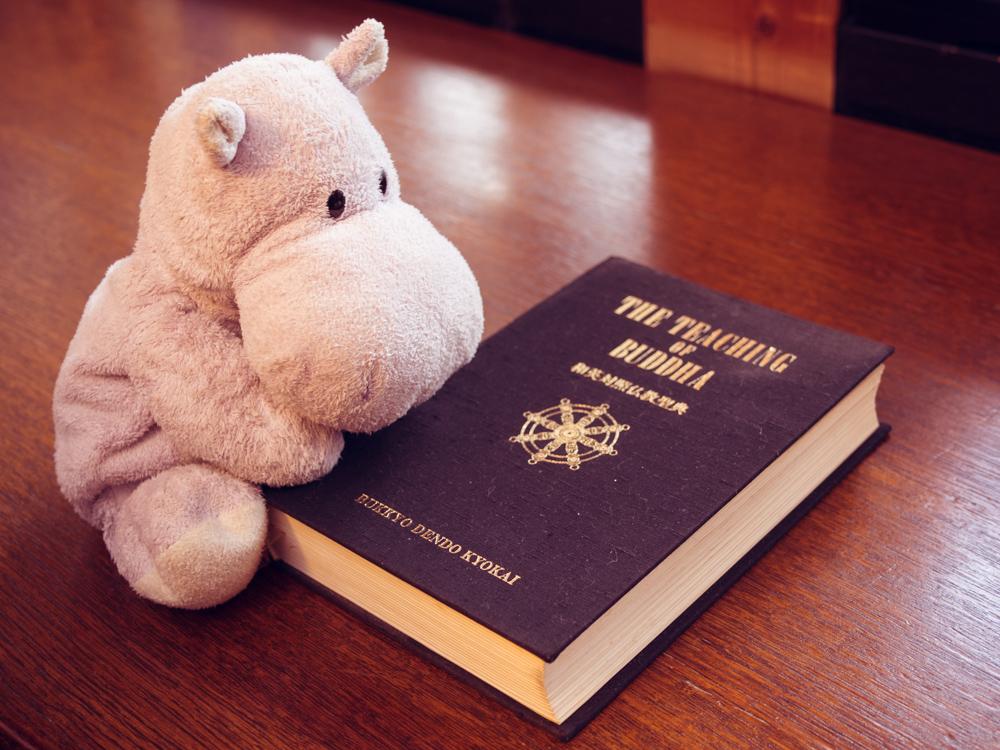 Tiny Hippo and the Buddha