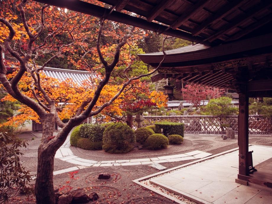 Garden at temple