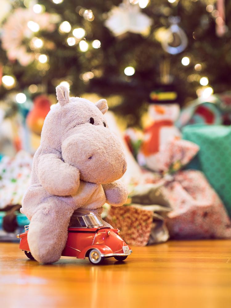 Tiny Hippo and a Tiny Car
