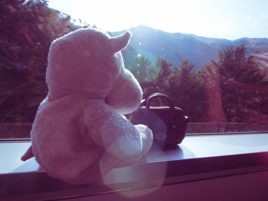 Tiny Hippo Going to Kyoto