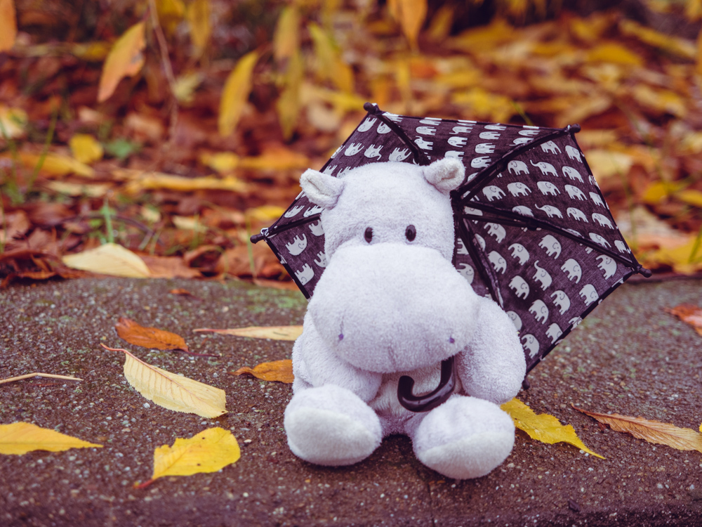 Tiny Hippo with Umbrella