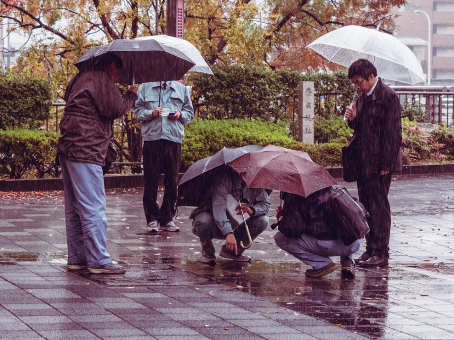 Kyoto Workers in the Rain