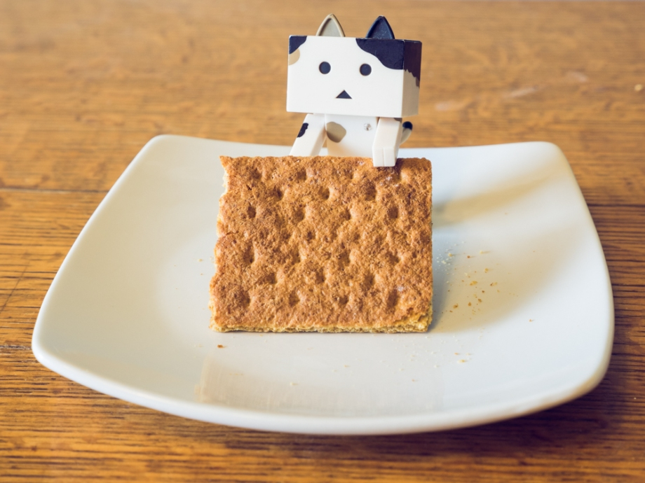 Graham Cracker and Neko Danbo