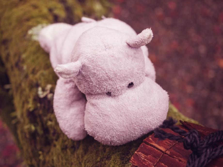 Tiny Hippo Climbs a Tree