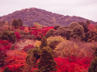 Kiyomizu-dera During the Autumn