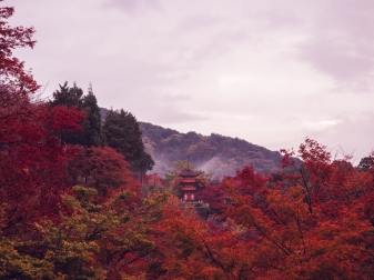Kiyomizu-dera in the Fall