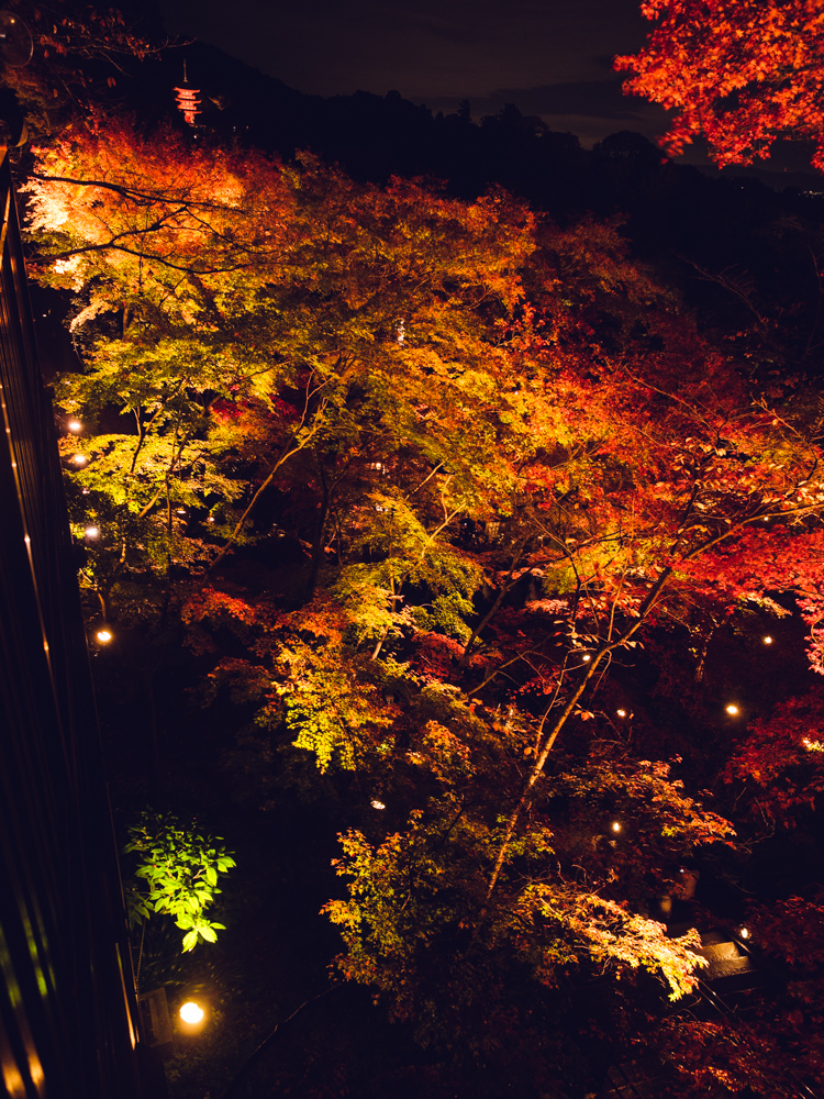 Kiyomizu-dera at Night